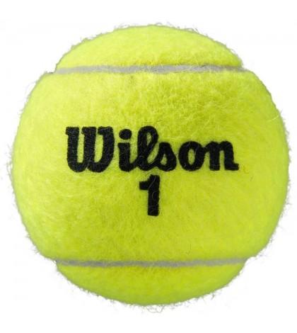 Wilson ROLAND GARROS CLAY OFFICIAL 4 Balls Can